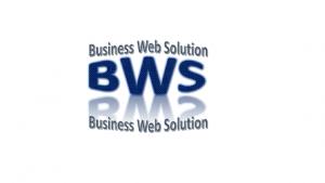 Business Website developers, web designer
