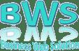 Business web Solution LOGO