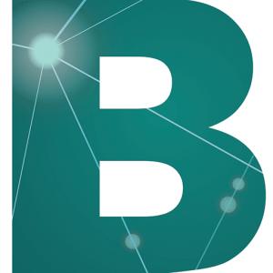 Business Web Solution-Favicon